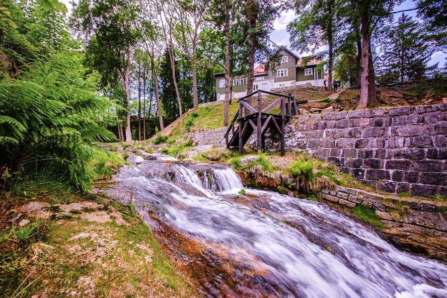 Wyjazd: Dobry wypoczynek z Jogą i Ajurwedą w Karkonoszach – Villa Sattva (15-21 sierpnia 2021)